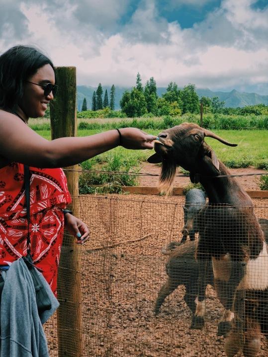 Me feeding the goat